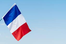 하늘에서 바람에 물결 치는 프랑스의 국기   프리미엄 사진